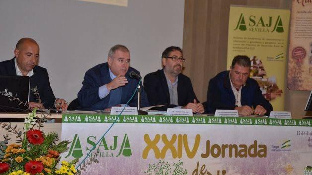 Asaja-Sevilla destaca que la previsión de una campaña corta eleva los precios del aceite al inicio de la recolección