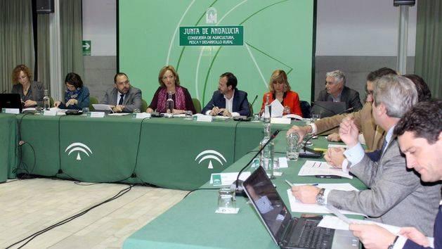 Andalucía ha destinado este año casi 200 millones a impulsar la competitividad del sector oleícola