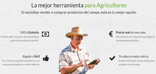 Pionera herramienta agrícola online para calcular el precio de la aceituna y comercializarla sin intermediarios