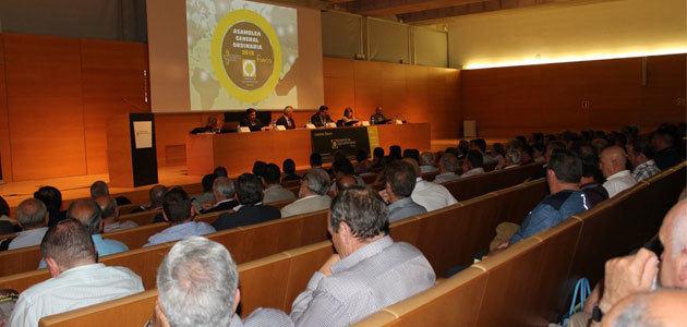 Las cooperativas granadinas aumentan su facturación un 6%, con el aceite de oliva como motor