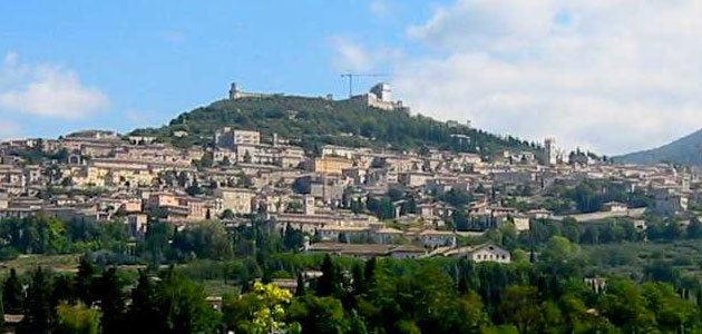 Los olivares italianos de Asís y Spoleto, reconocidos por la FAO