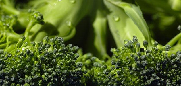 El brócoli, mejor salteado con virgen extra