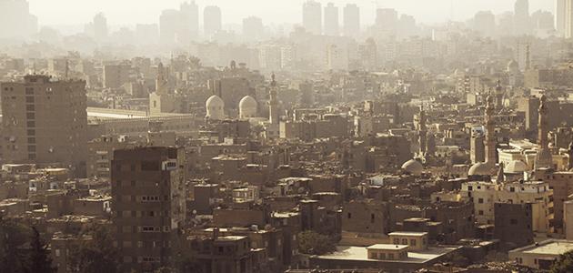 La oleicultura en Egipto