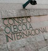 El COI celebra la 22ª reunión extraordinaria de su Consejo de Miembros