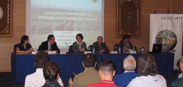 """Luis Rallo: """"El cambio en el olivar en los últimos años ha sido espectacular y ha llegado para quedarse"""""""