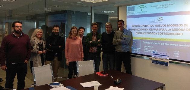 Dcoop coordina un Grupo Operativo que trabajará en la productividad y sostenibilidad del olivar