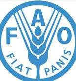 La FAO llama a la acción ante el riesgo de que la Dieta Mediterránea desaparezca