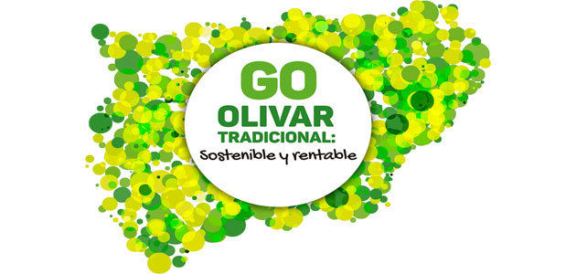GO Olivar Tradicional, un proyecto para aumentar la rentabilidad del olivar de Jaén