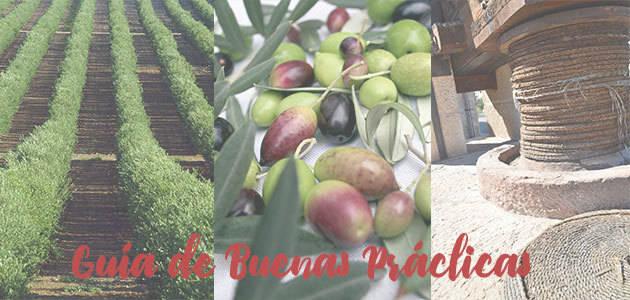 Algunas consideraciones sobre el uso responsable de fitosanitarios para el cultivo del olivo