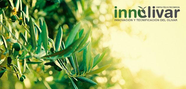 Innolivar prevé presentar sus resultados en 2021