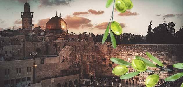 Israel aumenta las cuotas de importación libre de impuestos de aceite de oliva
