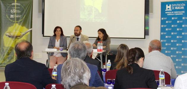 La mejora de la calidad el sector oleícola, eje de la III Jornada de asistencia técnica de la Diputación de Huelva