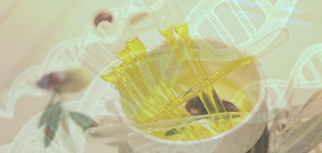 La apuesta por el proceso molecular para la trazabilidad del aceite de oliva