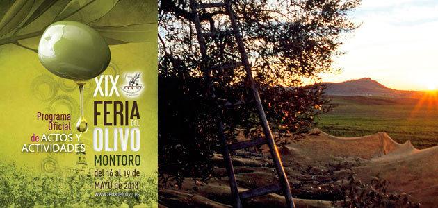 Montoro se convierte en epicentro de la olivicultura y el aceite de oliva