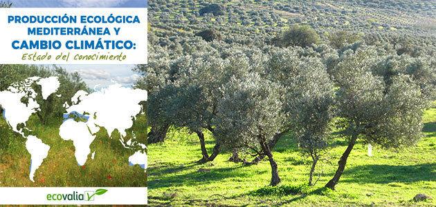 Un informe científico demuestra que el olivar ecológico neutraliza la huella de carbono