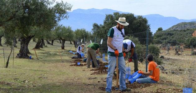 El 90% de los agricultores andaluces, a favor de potenciar la biodiversidad en sus olivares