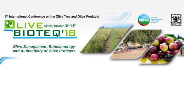 Olive Bioteq reunirá en Sevilla los últimos avances y conocimientos en olivicultura