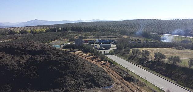 El sector orujero europeo analiza los bajos precios del aceite de orujo de oliva y la biomasa del olivar