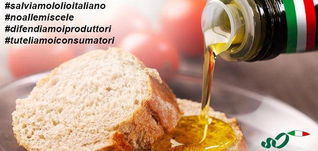 """Los olivicultores italianos lanzan una campaña pública para """"salvar"""" el aceite de oliva Made in Italy"""