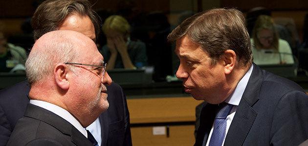 "Los aranceles a la aceituna negra, un ""asunto europeo"""