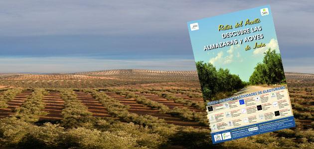 ¿Quieres descubrir las almazaras y AOVEs de Jaén?
