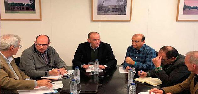 La Junta de Extremadura plantea llevar riego de apoyo al olivar