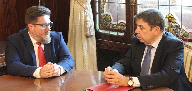 """Junta y Ministerio buscan """"todas las alternativas"""" para apoyar al sector de la aceituna negra"""
