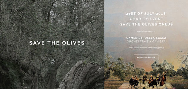 Música de La Scala de Milán para salvar los olivos italianos de la Xylella