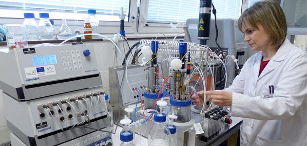 """Investigadores de la UJA diseñan una """"biorrefinería"""" sostenible para aprovechar la biomasa del olivar"""