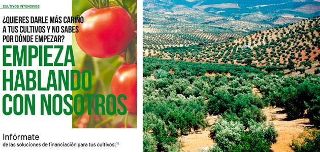 Unicaja Banco lanza una nueva campaña de financiación de cultivos intensivos