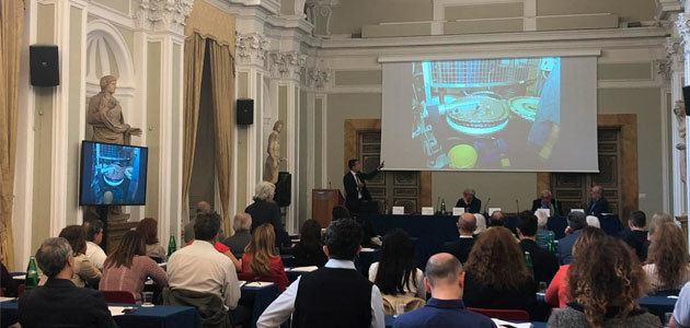 El futuro del aceite de oliva italiano explicado a periodistas