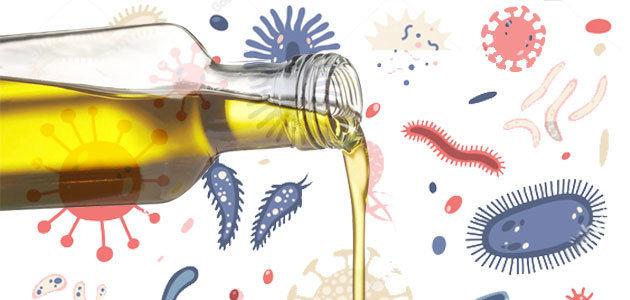 Aceite de oliva y microbiota intestinal, un incipiente campo científico por explorar