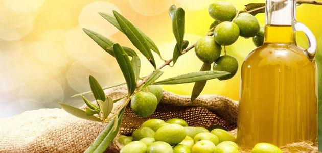 Exportaciones agroalimentarias: tendencias, retos y mercados prioritarios