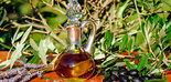 Las exportaciones intracomunitarias de aceite de oliva subieron un 13% en el primer trimestre de campaña