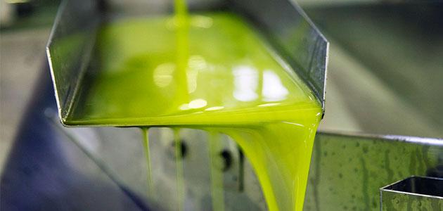 Las salidas de aceite al mercado en noviembre se sitúan en 110.000 toneladas