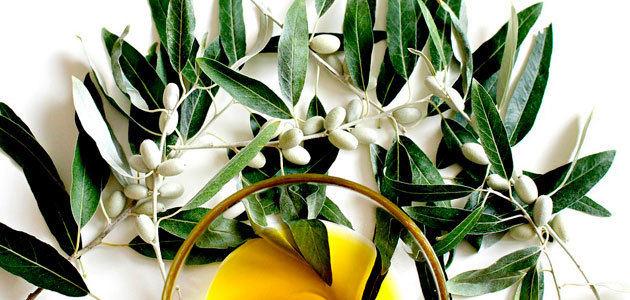 Estudian la eficacia de los polifenoles del olivo frente a la fibromialgia