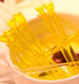 El aceite de oliva, base fundamental de una dieta equilibrada
