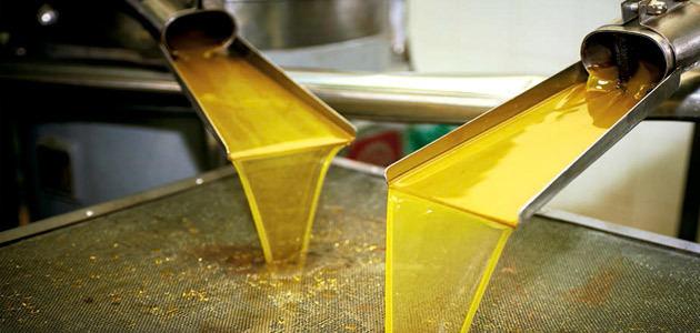 Las exportaciones europeas de aceite de oliva aumentaron un 17,3% hasta julio