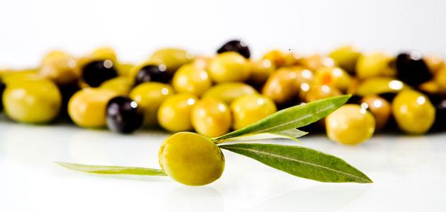 Andalucía supera las 480.000 toneladas de aceituna de mesa en 2018, el 82% de la producción total de España