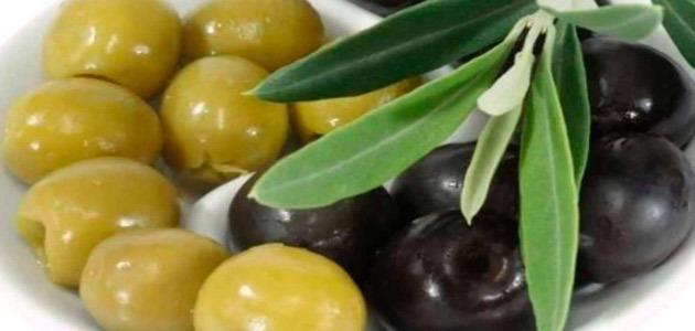 Asaja-Sevilla estima que la producción nacional de aceituna de mesa será la más corta del último decenio