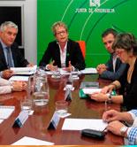 El Gobierno andaluz prevé un 42% menos de aceite que la media de las cinco últimas campañas