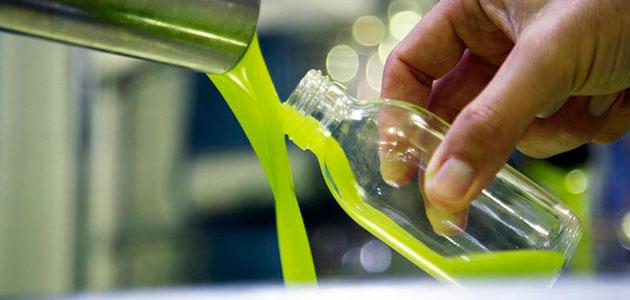 Organizaciones y cooperativas creen que la producción de aceite de oliva será menor de lo aforado por la falta de lluvias