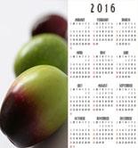 Prepara tu agenda: ferias y eventos imprescindibles durante los últimos meses del año
