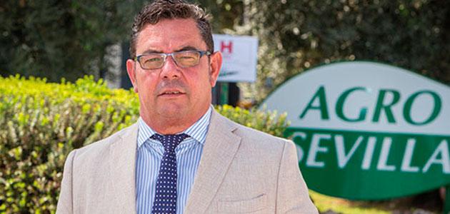 Gabriel Cabello, nuevo representante sectorial de Aceituna de Mesa de Cooperativas Agro-alimentarias