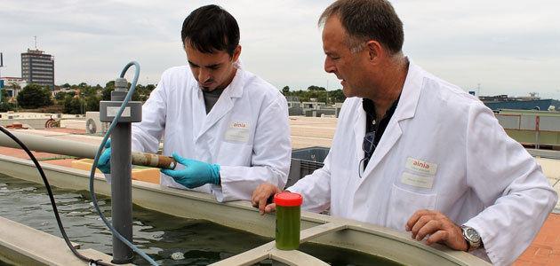 TrustEE, una plataforma para impulsar proyectos de eficiencia energética en las pymes del sector agroalimentario