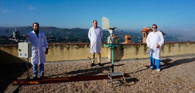 Alergólogos predicen la cosecha de aceituna en función de la concentración de pólenes del olivo