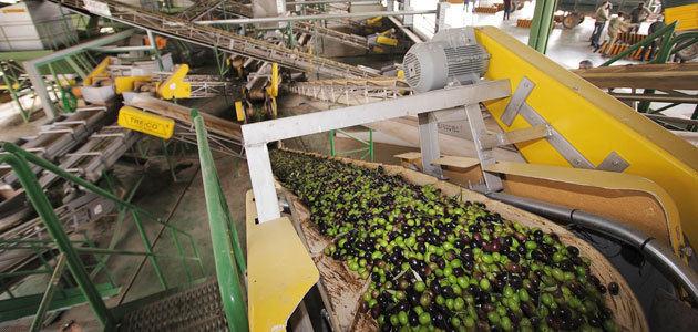 Cooperativas Agro-alimentarias de España presenta a la CE su propuesta de autorregulación del aceite de oliva