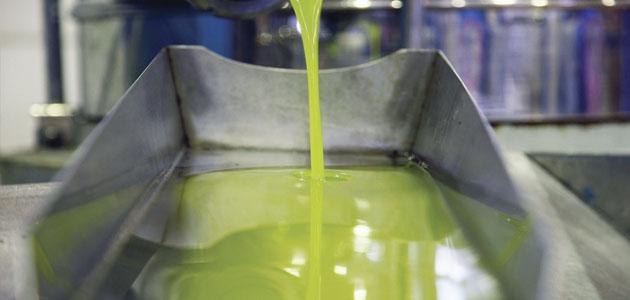 Ritmo fluido de salidas de aceite de oliva al mercado en el último mes