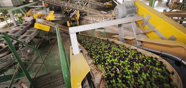 Andalucía amplía hasta el 9 de enero el plazo para optar a las ayudas a la industria agroalimentaria