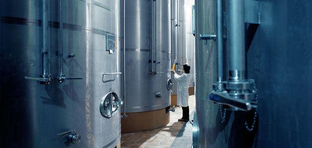 Investigan la optimización económica y ambiental en las almazaras